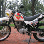 Honda scrambled 250cc. Discontinued in 2010.
